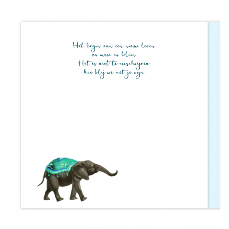 Geboortekaartje 2de kindje olifant