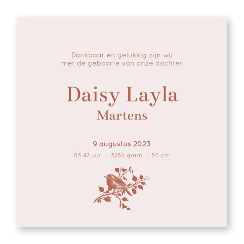 Geboortekaartje Daisy