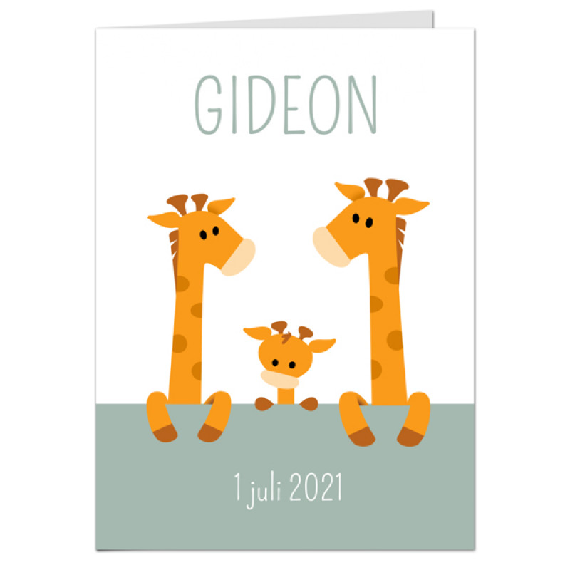 Geboortekaartje Drie girafjes