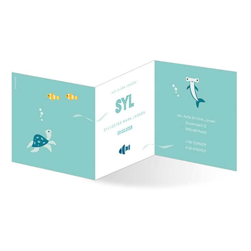 Geboortekaartje Drieluik vissen en naam