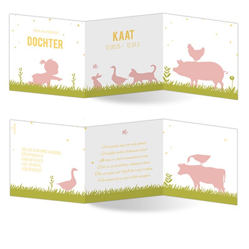 Geboortekaartje drieluikje lente