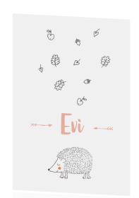 Geboortekaartje Egel Geboortekaartje