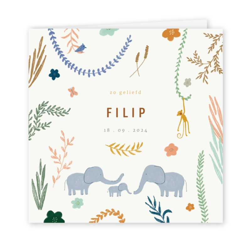 Geboortekaartje Familie olifant