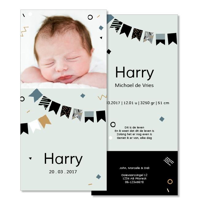 Geboortekaartje Fotokaartje  |  Harry