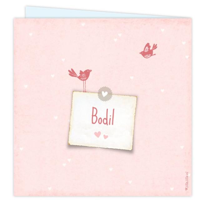 Geboortekaartje Fotokaartje vogeltjes