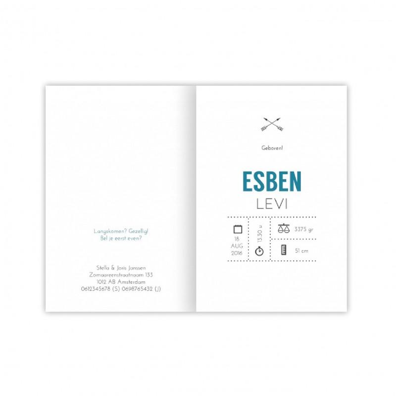 Geboortekaartje Geboortekaart - Esben