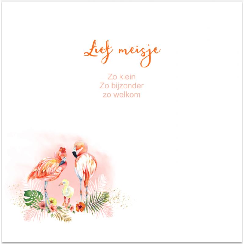 Geboortekaartje Geboortekaart Flamingo