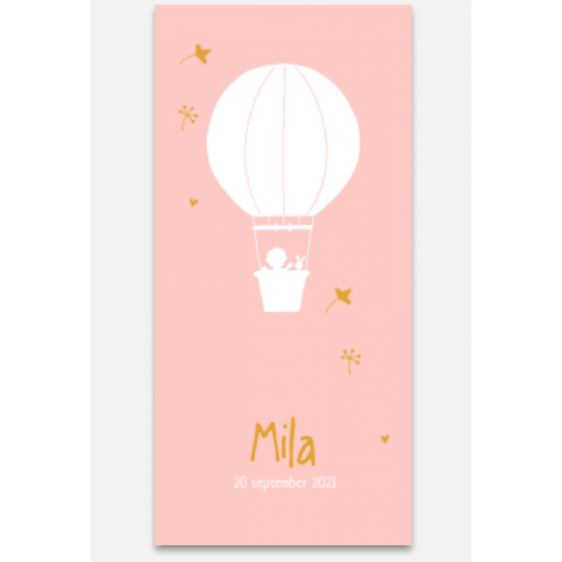 Geboortekaartje Geboortekaart Luchtballon
