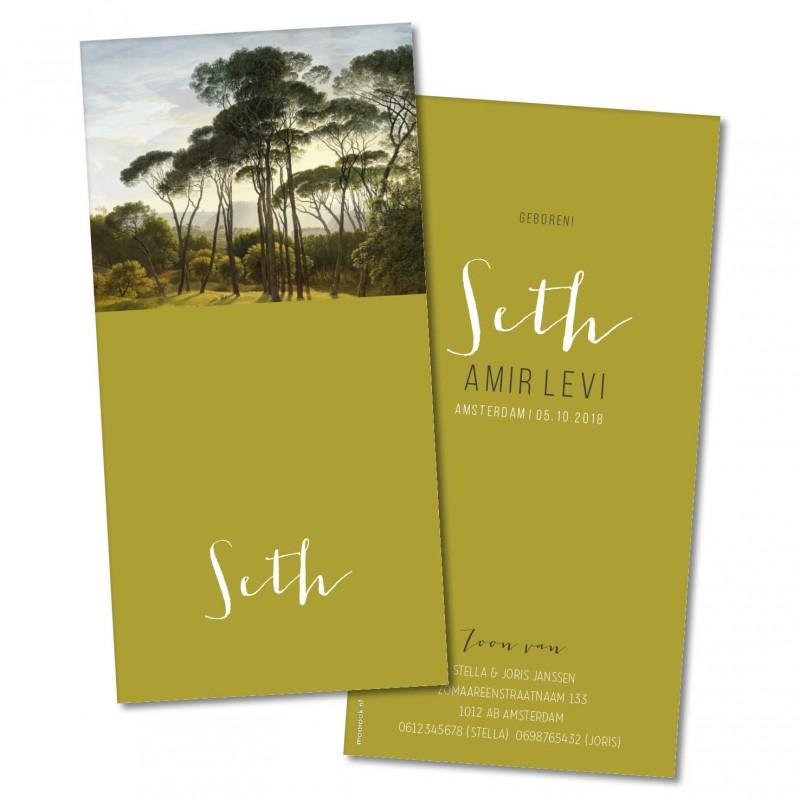 Geboortekaartje Geboortekaart - Seth
