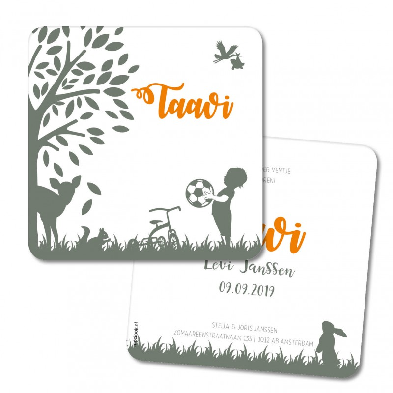 Geboortekaartje Geboortekaart - Taavi