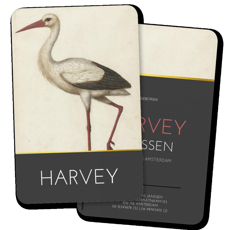Geboortekaartje Geboortekaartje Harvey