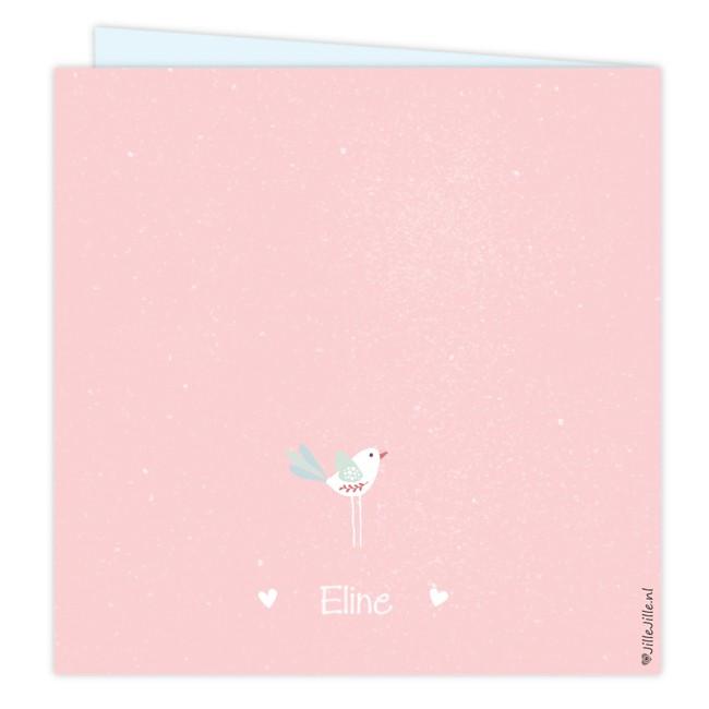 Geboortekaartje Geboortekaartje vogeltjes