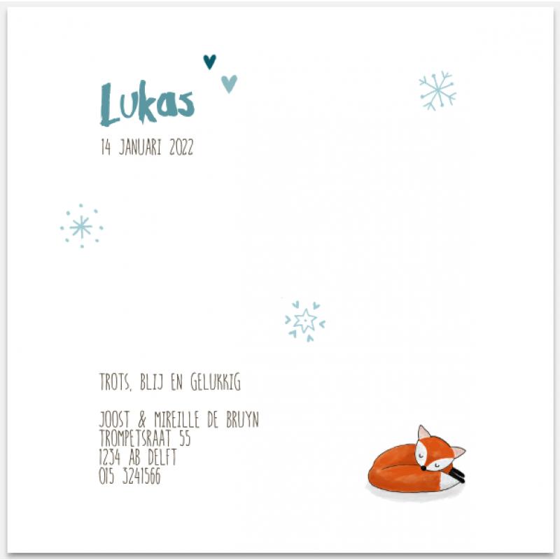 Geboortekaartje geboortekaartje-vos