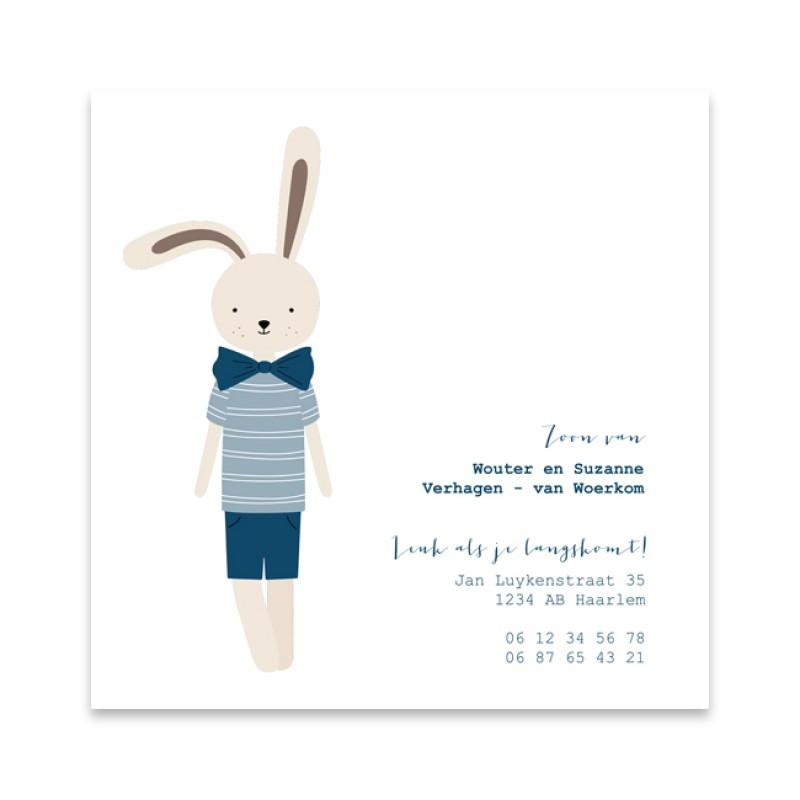 Geboortekaartje Geïllustreerd konijntje