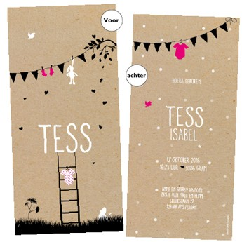 Geboortekaartje Gupje Tess