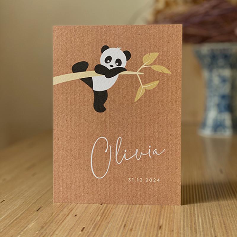 Geboortekaartje hangende panda