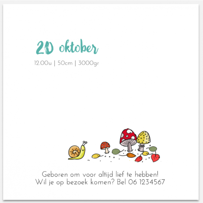 Geboortekaartje Herfst Geboortekaartje