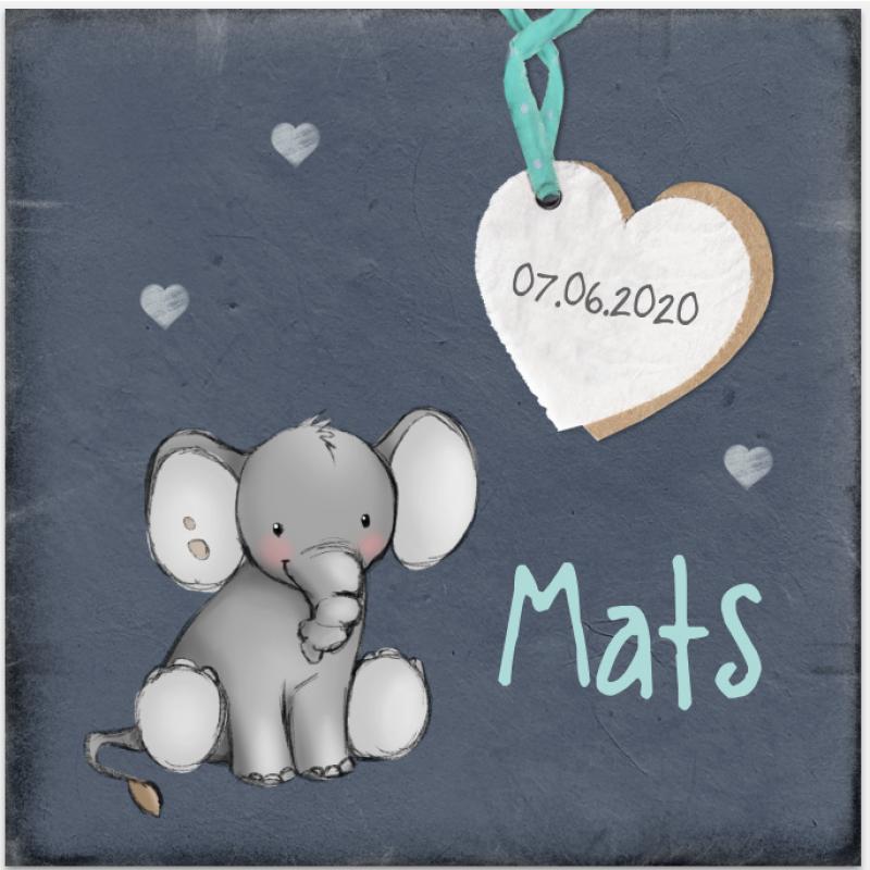 Geboortekaartje Jongen kaartje olifant