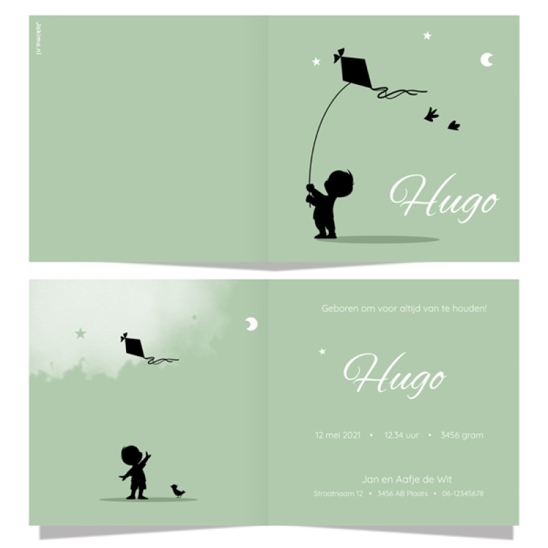 Geboortekaartje jongen met vlieger