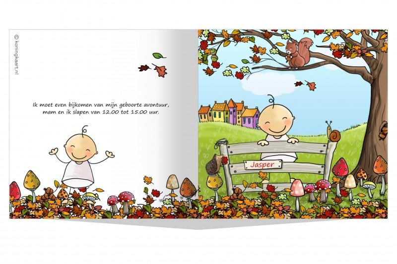 Geboortekaartje Jongetje herfst op hekje