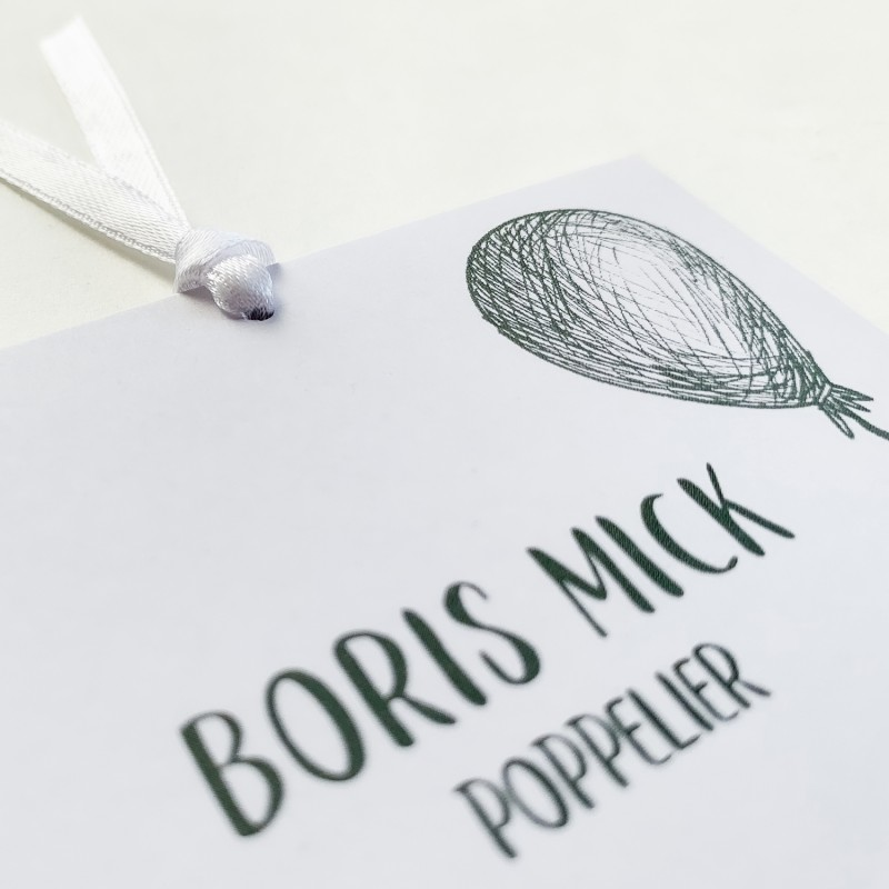 Geboortekaartje kalkpapier en illustraties
