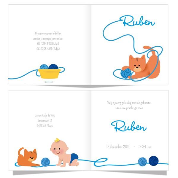 Geboortekaartje Kat en jongen