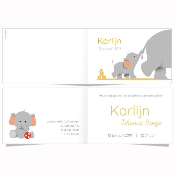 Geboortekaartje klein olifantje