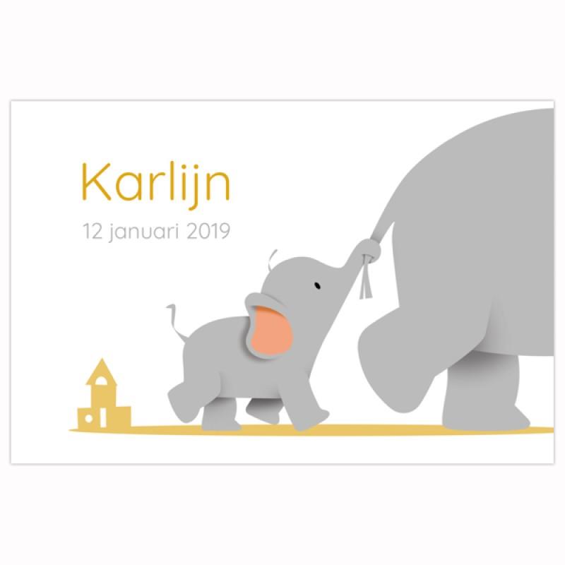 Geboortekaartje kleine olifant