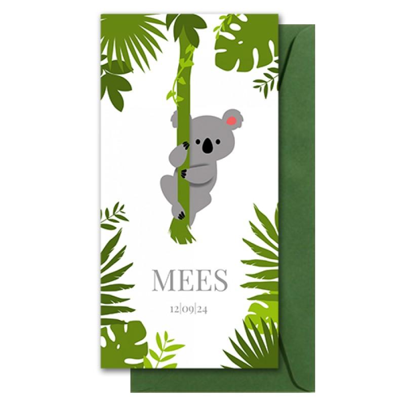 Geboortekaartje koala aan liaan