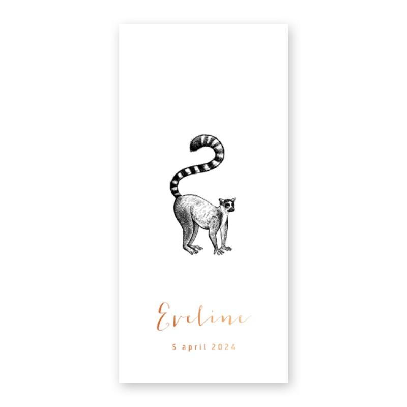 Geboortekaartje Koperfolie en aapje