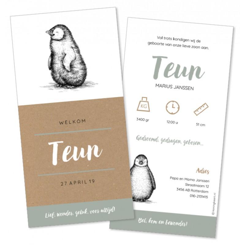 Geboortekaartje Kraft en getekende pinguïn