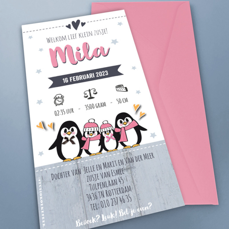 Geboortekaartje Lieve pinguïn