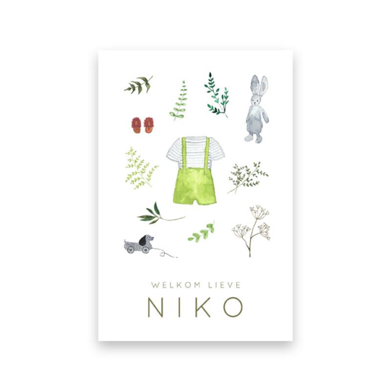 Geboortekaartje Niko