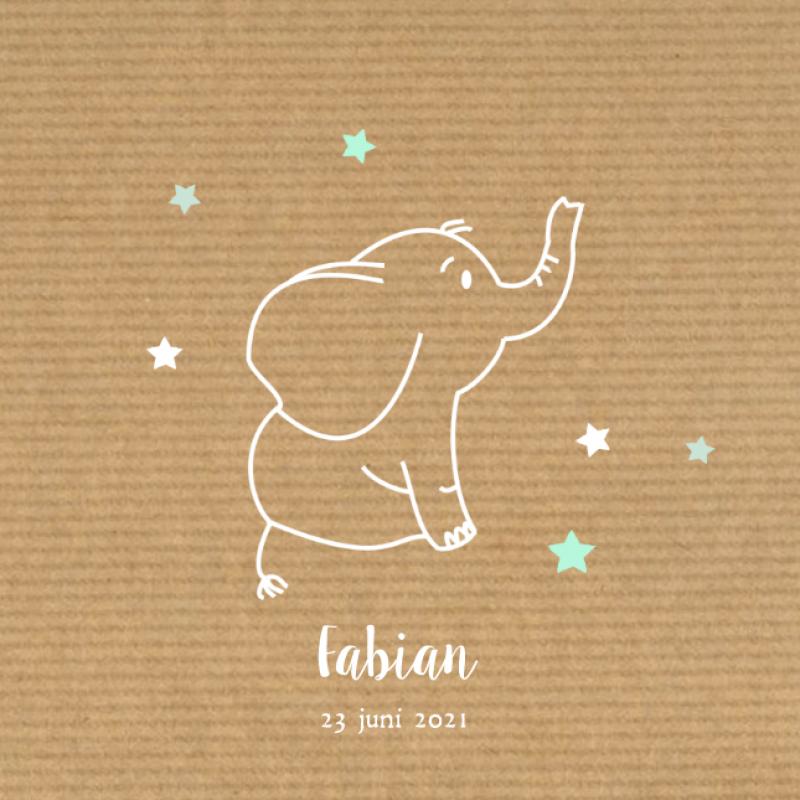 Geboortekaartje Olifantje en sterren