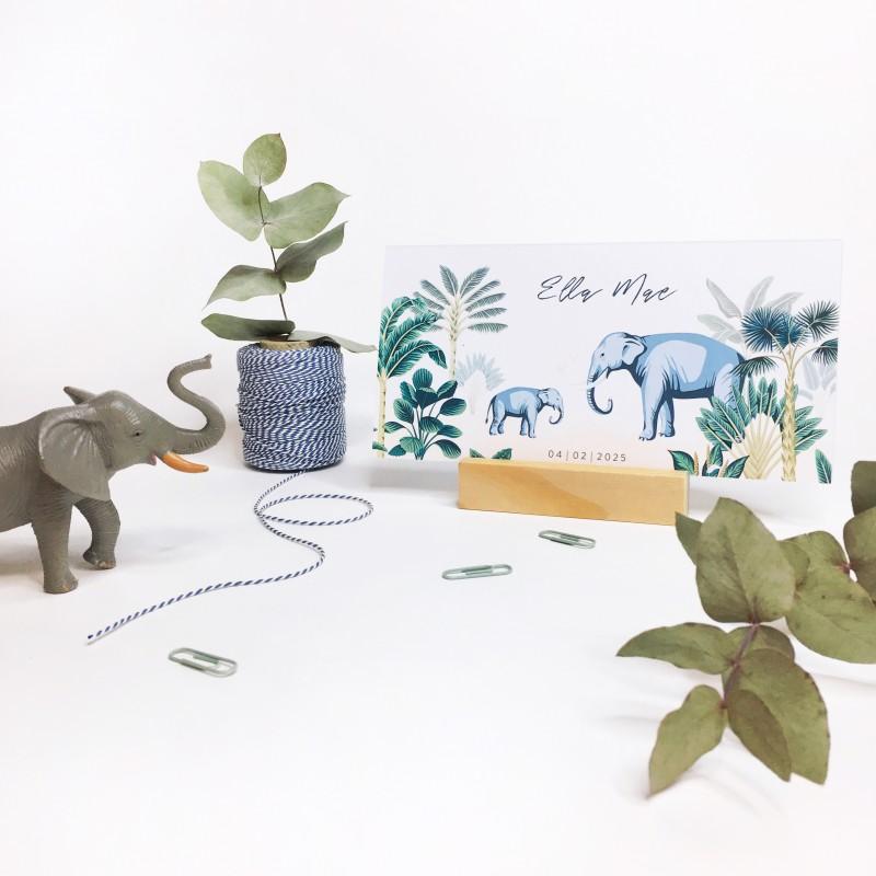 Geboortekaartje Olifantjes