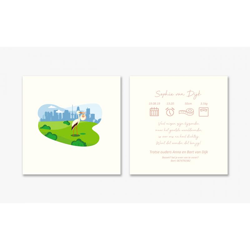 Geboortekaartje Ooievaar en baby kaart
