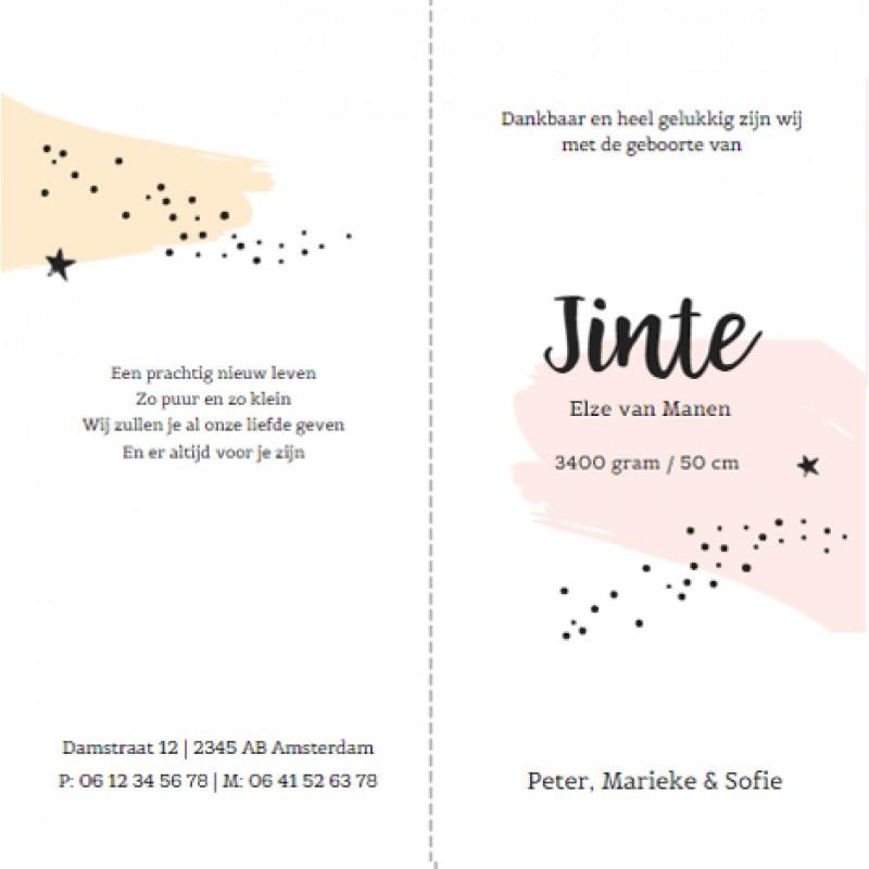 Geboortekaartje Roze en gele brush