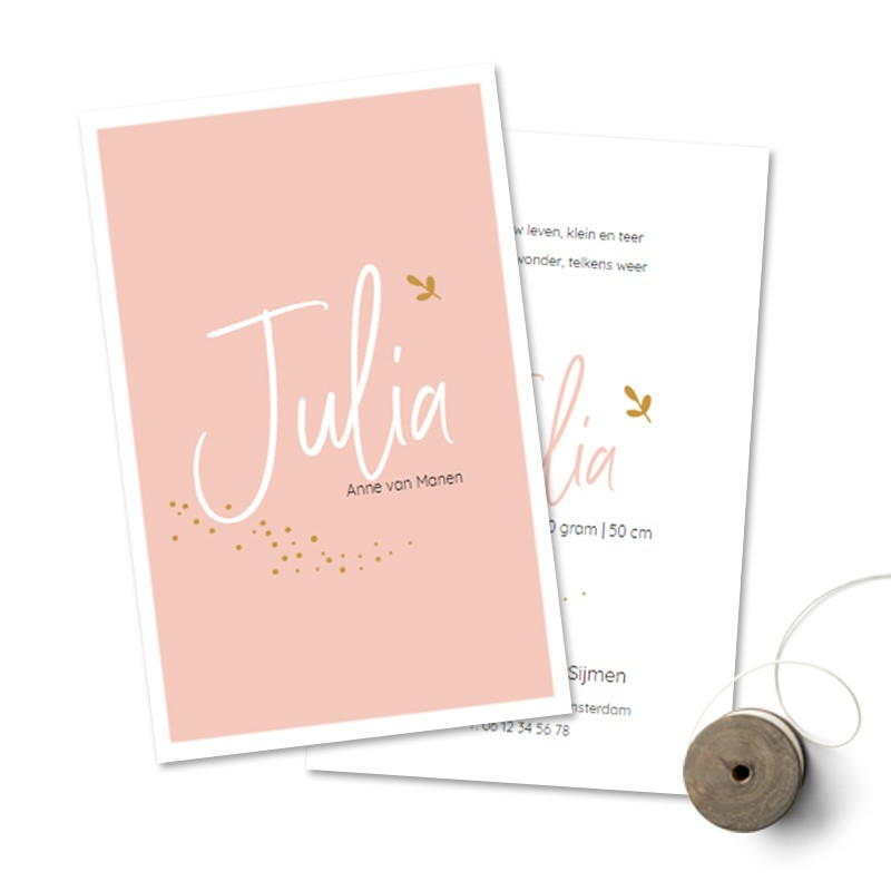 Geboortekaartje Roze met witte rand en tak