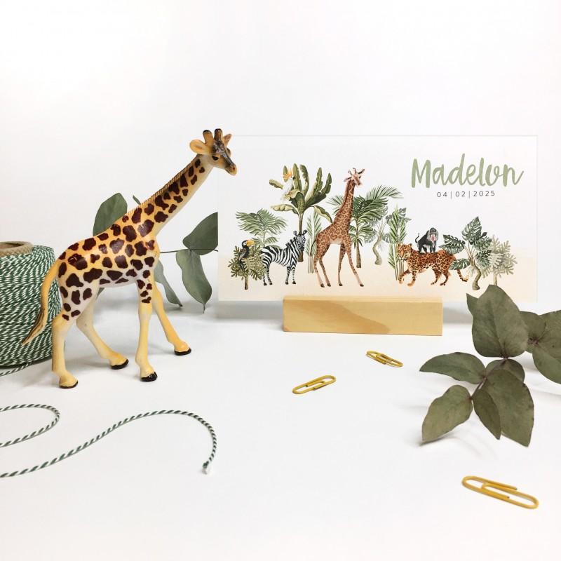 Geboortekaartje Safari met dieren
