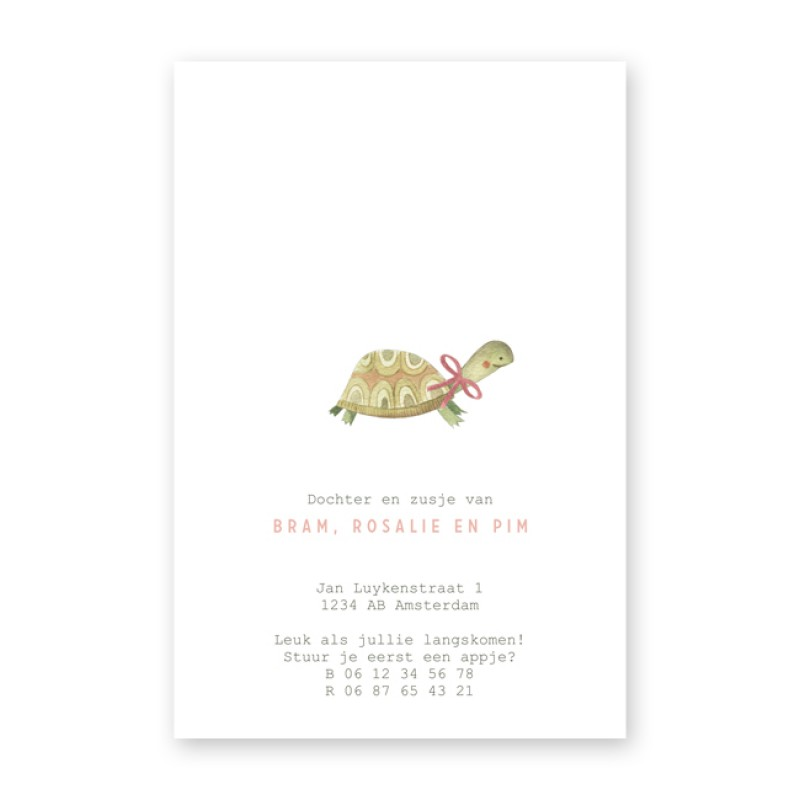 Geboortekaartje Schildpad in de jungle