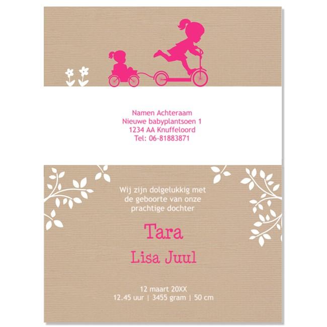 Geboortekaartje silhouet kaartje zusjes