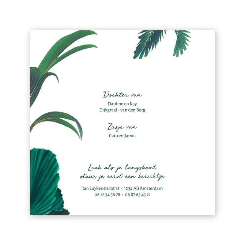 Geboortekaartje Stoer jungle kaartje