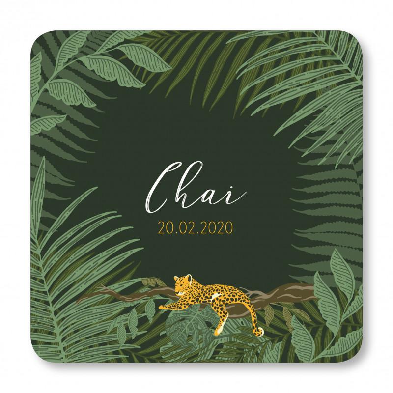 Geboortekaartje Tijger Chai
