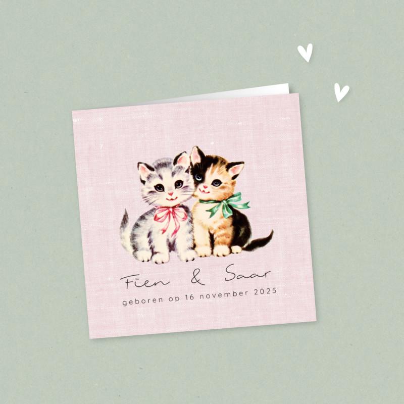 Geboortekaartje Twee katjes