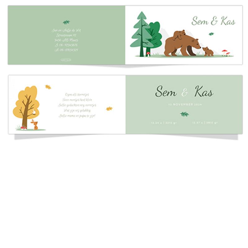 Geboortekaartje Twee kleine beren