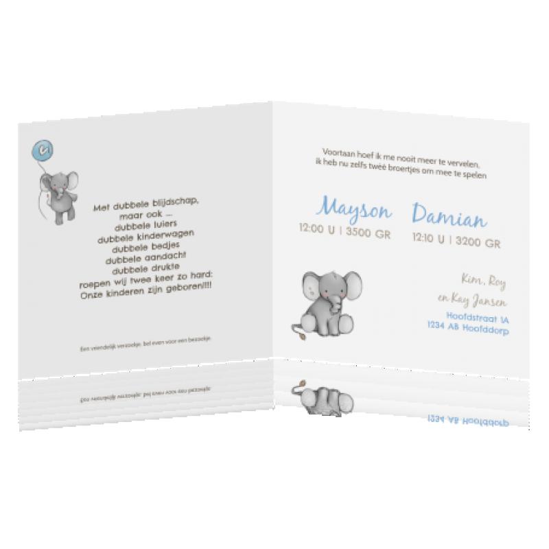 Geboortekaartje Tweeling olifantjes jongen