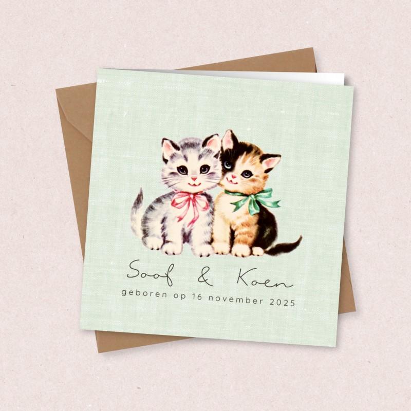 Geboortekaartje Tweelingkaart met katjes