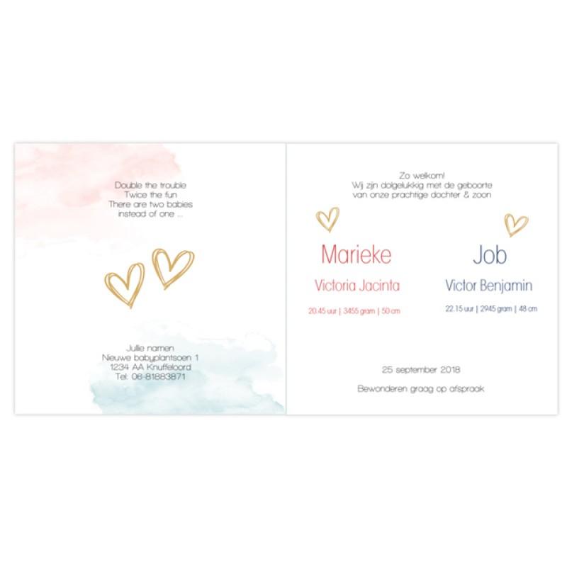 Geboortekaartje Tweelingkaartje confetti