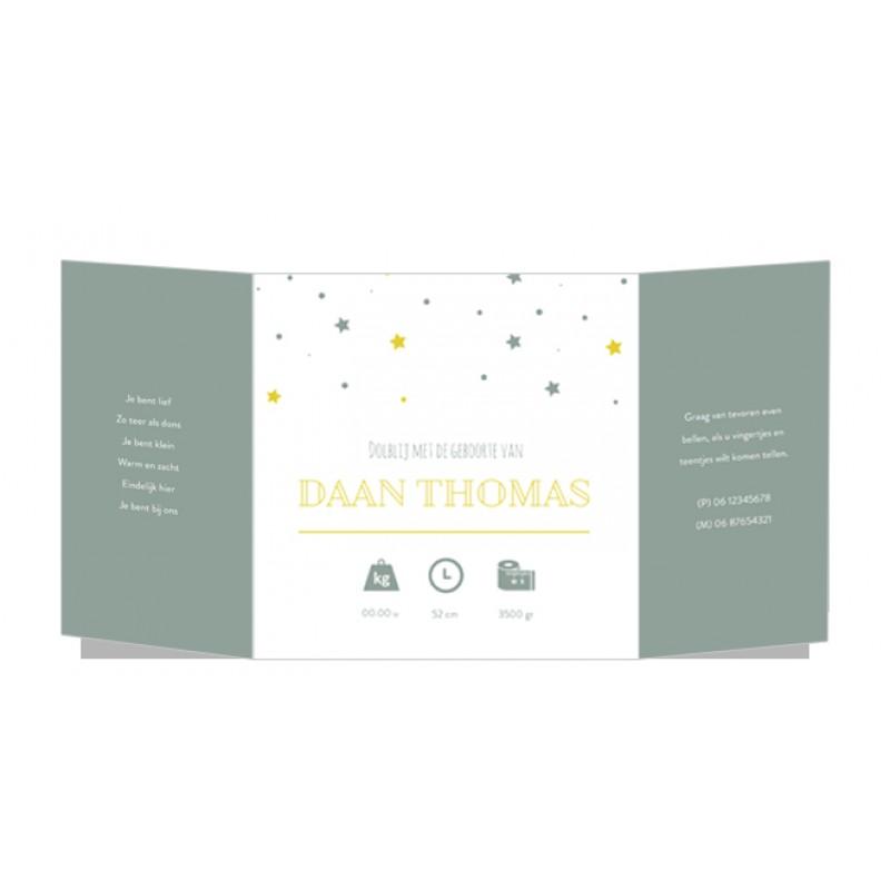 Geboortekaartje Tweeluik met sterren