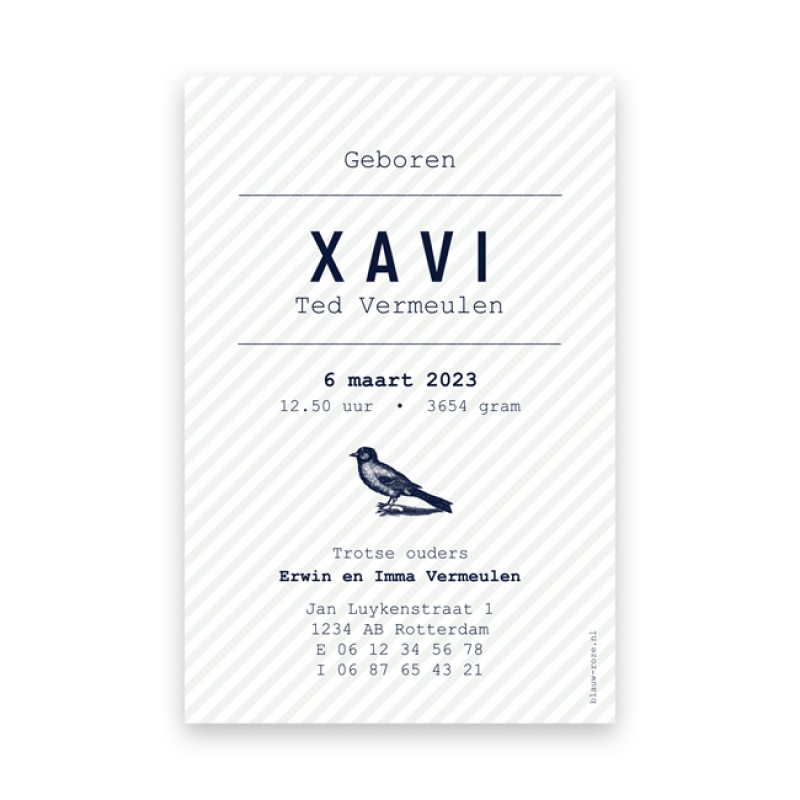 Geboortekaartje Vogel en streepjes